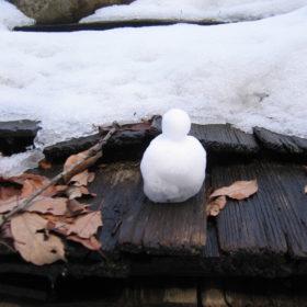 Snow, again and always.